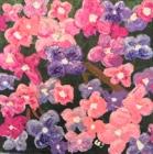 Flowering. Acrylic and gel medium on canvas, 2018.